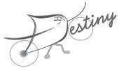 Destiny_web